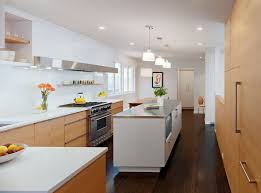 Dark Floors Light Cabinets Light Cabinets Dark Countertops Kitchen Contemporary With Recessed