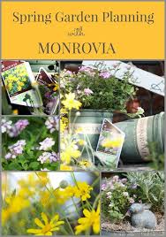 What Are The Gardening Zones - 286 best waterwise plants images on pinterest plant catalogs