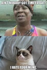 ain t nobody got time fo dat i hate your meme sweet brown and