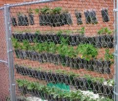 vertical gardens save space with diy vertical gardens the garden