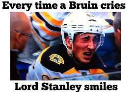 Bruins Memes - i hate the boston bruins home facebook