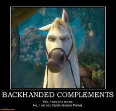 Horse Birthday Meme - sarah jessica parker jokes kappit