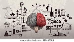 brain vector free vector art at vecteezy