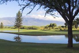 my big backyard a big advantage to golf course living at