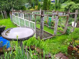 garden and patio diy enclosed backyard vegetable best images on