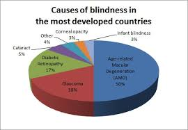 Symtoms Of Blindness Blindness Symptoms Images Reverse Search