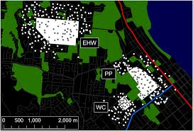 local introduction and heterogeneous spatial spread of dengue