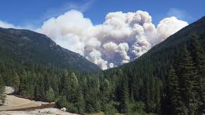 Current Wildfires In Canada by Scientists Let Wildfires Burn When Prudent Uw News