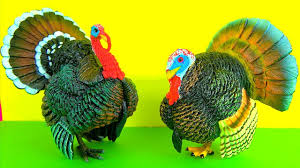 thanksgiving day puzzles thanksgiving day happy thanksgiving day holiday turkey and farm