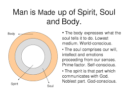 soul and spirit powerpoint is made up of spirit soul and