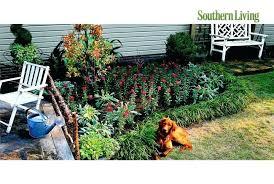 Tropical Gardening Ideas No Lawn Landscaping Ideas Amazing Small Tropical Backyard Ideas