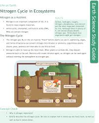 are study guides nitrogen cycle in ecosystems study aids earth science ck