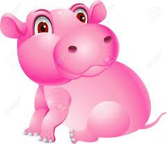 hippopotamus images u0026 stock pictures royalty free hippopotamus
