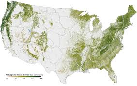 Large Map Of United States by Forest Cover By State In The United States Wikipedia