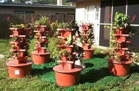 amazon com grow up hgtc vertical hydrogarden deluxe planter kit