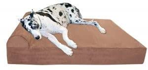 the best large dog beds in 2018 dogs recommend