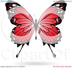 clipart of a butterfly with a shadow royalty free vector