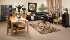 Cream Colored Shag Rug Furniture Combination Orange And Cream Sofa Color With Shag Rug