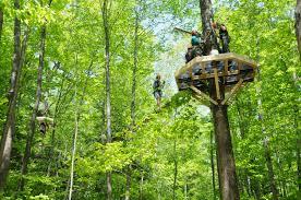 zip line canopy tours in massachusetts zoar outdoor deerfield