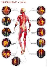 pain body joint pain full body pain all type in lalheri road khanna rich