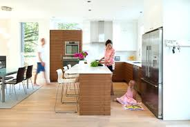 designing kitchen kitchen designing kitchen designing softwares cursosfpo info