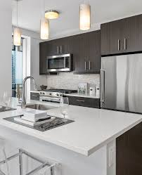 Studio 1 2 & 3 Bedroom Streeterville Apartments for Rent