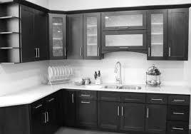 cabinet cabinet door hinges enchanting cabinet door hinge