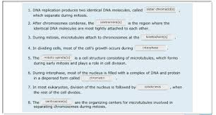 mastering biology chapter 12 mitosis flashcards easy notecards