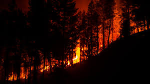 Wildfires Burning In Washington State by A Vital Guide To Current Wildfire Conditions Outdoor Project