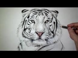 les 25 meilleures idées de la catégorie comment dessiner un lion