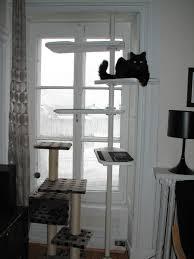 un arbre à chat noir et blanc avec stolmen