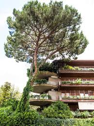 green apartment block and tree in rome stock image image