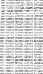 patent ep2277522b1 methods for increasing or decreasing bone