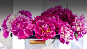 luxury flowers luxury flowers and gifts girol