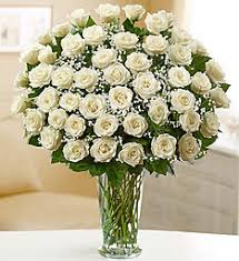 White Roses For Sale Send Roses Rose Delivery U0026 Rose Bouquets 1800flowers Com