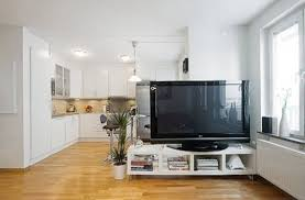 how to use a tv as a room divider apartment therapy