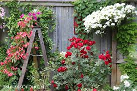 Planter Garden Ideas 21 Gorgeous Flower Planter Ideas From Home Gardens Empress Of Dirt
