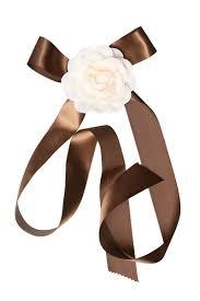 brown ribbon ribbon and sash