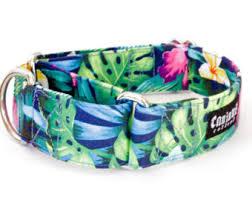 tuesday collar etsy hawaiian dog collar etsy