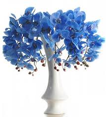 Blue Orchid Flower Aliexpress Com Buy 10pcs Lot Plastic Blue Orchid Flower Real