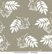 seamless floral pattern silhouettes rowan tree stock vector