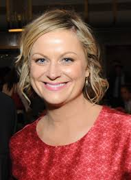vanessa hudgen leaked photos amy poehler wikipedia