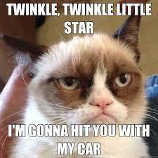 Mean Cat Memes - mean kitty memes quickmeme