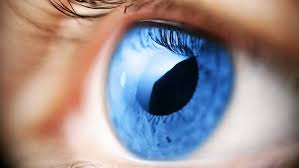 What Can Cause Blindness Glaucoma What Do I Need To Know Portugal Resident