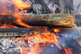 free images wood track smoke flame fire glow ash barbecue