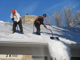 Zaleski Snow Guard by Snow Roofing U0026 Snow Roofing Was Founded On Providing The Best