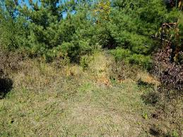 Natural Hunting Blinds My Quick 10 Bow Hunting Blind Album On Imgur