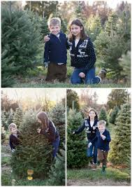 a mystic family session at a christmas tree farm anna sawin
