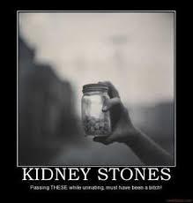 Kidney Stones Meme - lovely kidney stones meme pin cartoon cat small mask plastic on