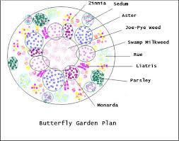 butterfly garden plan 1 throughout butterfly garden layout plans